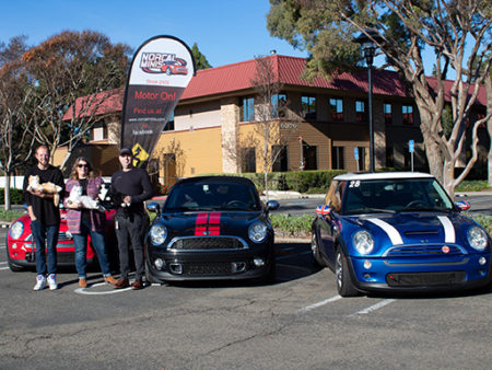 Mini Cooper cars with owners.